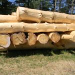 Hand_Peeled_High_Charcater_White_Pine_Logs