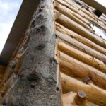 Larch_Logs_at_Corners